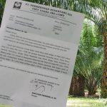 PTPN XIV Kembali Mengancam Lahan Pertanian Milik Masyarakat di Kecamatan Burau Kabupaten Luwu Timur